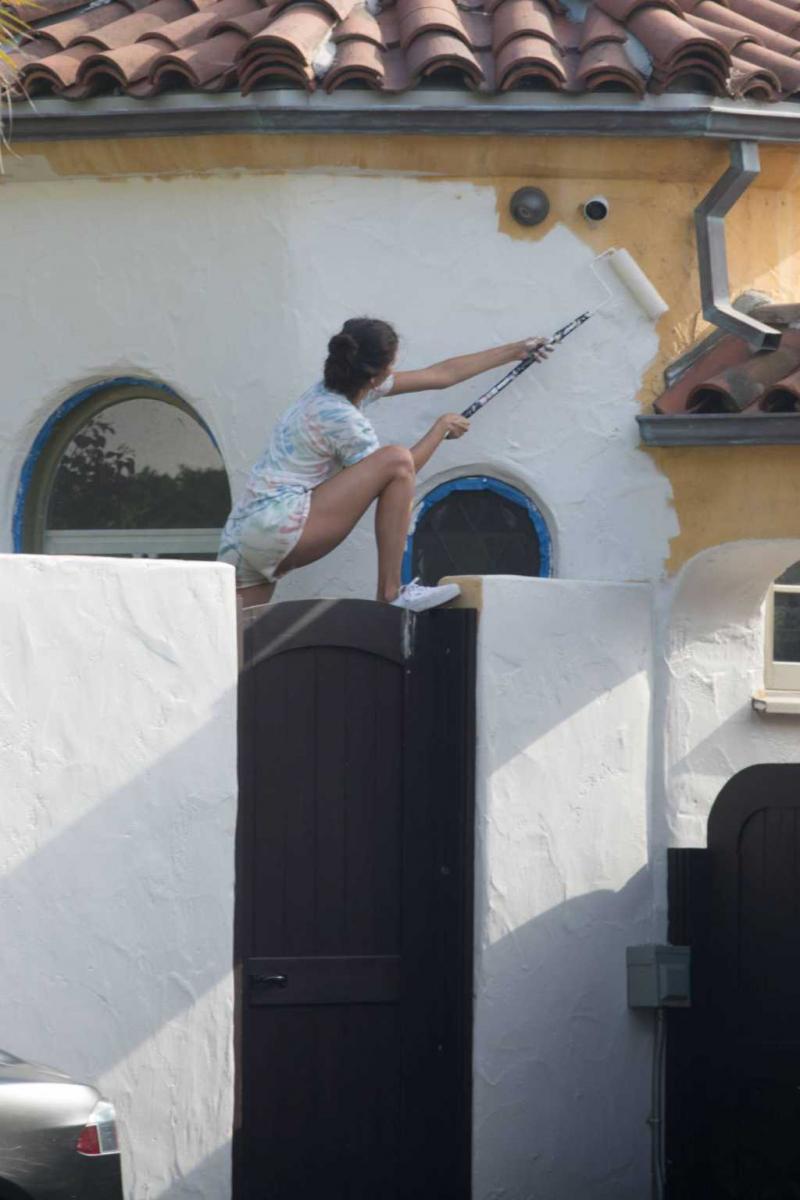 Nina Dobrev evini boyadı