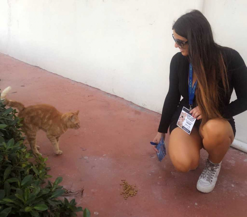 Claudia Romani kedilerle