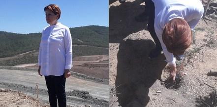 Akşener, Kaz Dağları'nda: Buradan Sayın Erdoğan'a sesleniyorum. Gel kardeşim şurayı gör