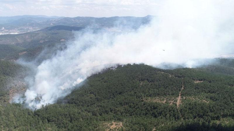 Bursa'da 9 noktada başlayan yangın söndürüldü