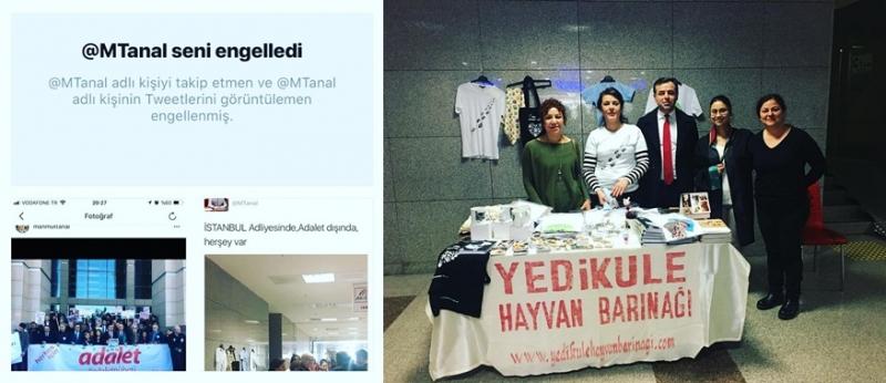 CHP milletvekili Mahmut Tanal'dan hayvansever hukukçulara çirkin saldırı!