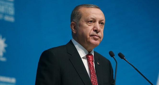 Cumhurbaşkanı Erdoğan: Belediye başkanları istifalarını en kısa sürede verecek