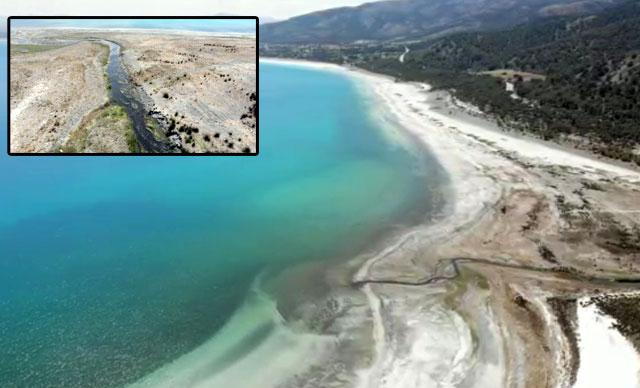 DHA: Salda Gölü'nü inekler kirletmiş