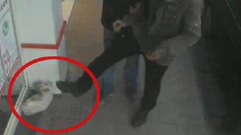 Kaldırımdaki kediyi tekmeleyen kişi aranıyor