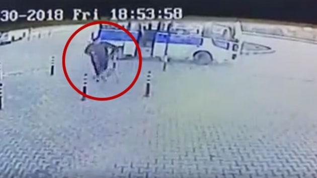 Köpeği tekmeleyen Hüseyin Kapkaç isimli caniye 625 lira para cezası