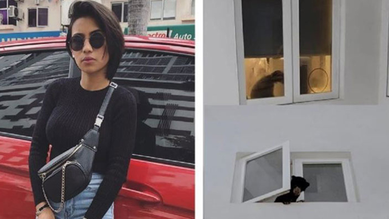 Köpek sandığı ayıyı evine götüren şarkıcı tutuklandı