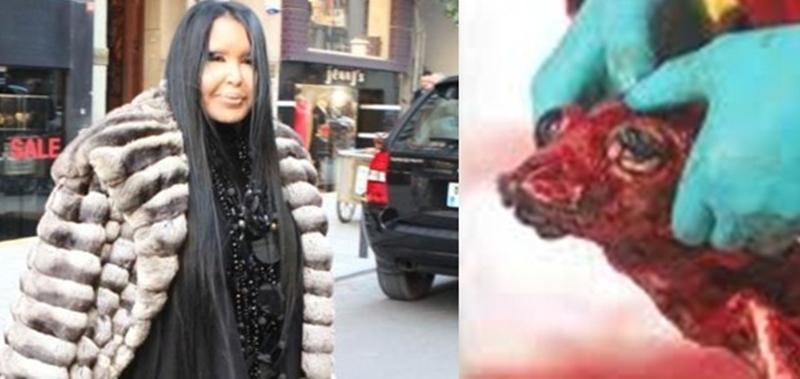 Kürk giyen Bülent Ersoy: Köpeğin kulağını kesenler cezalandırılmazsa Ankara'ya yürüyeceğim