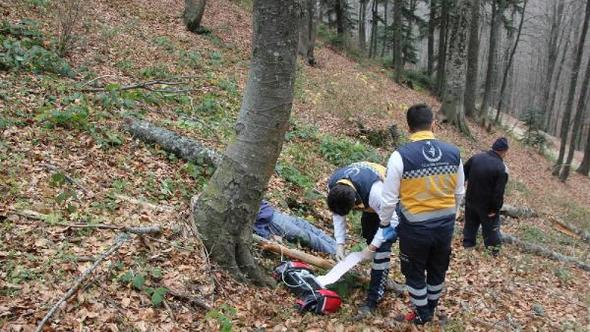 Ormanda kestiği ağaç kafasına çarptı