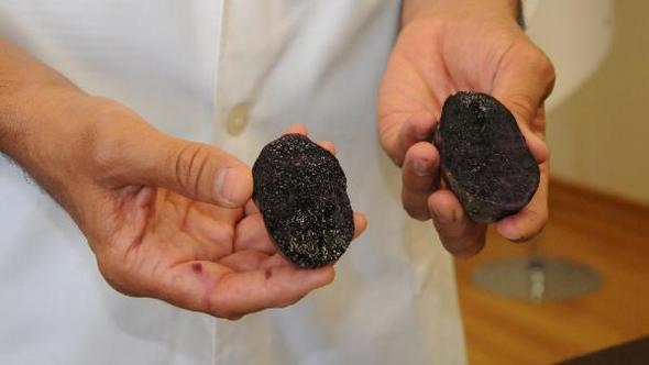 Türkiye'de 'Mor patates' üretildi