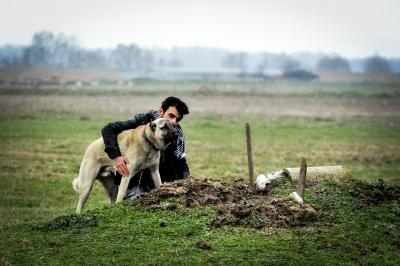 27 yıllık köpek dostunun her gün mezarına gidiyor: Evladım gibiydi