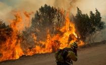 3 gündür süren yangın gittikçe büyüyor!