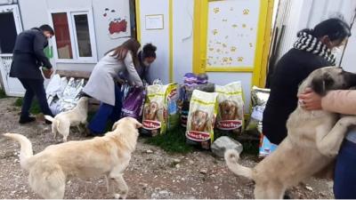 Açtığı davadan hayvan barınağına mama bağışlama şartıyla vazgeçti