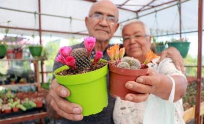 Adana'da kansere yakalanan eşi için 1200 kaktüs yetiştirdi