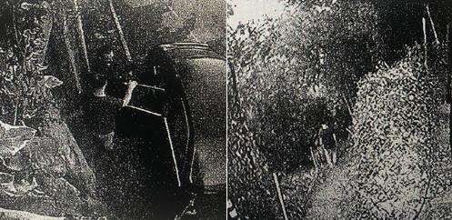 Adnan Oktar ve baş kediciğinin gizli geçitten kaçış görüntüleri ortaya çıktı