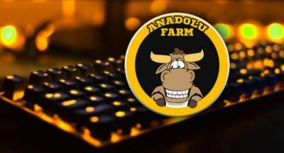 Anadolu Farm isimli oyun için üyelerden toplanan 35 milyon kayıp!