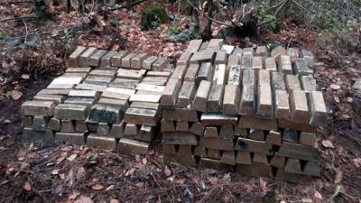 Antalya'da 20 ton altın bulundu iddiası! Gerçek ortaya çıktı