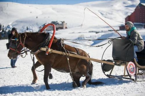 Uludağ'da atlara işkence!