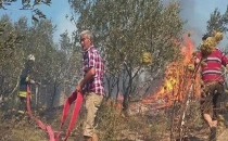 Avşa Adası da yanıyor! Yangın zeytinliklere sıçradı...