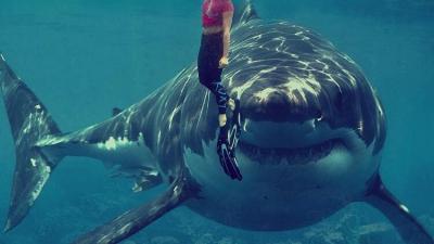 Balık öldürmeye çalışan kişiyi köpek balığı öldürdü