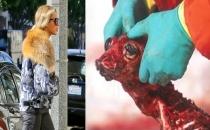 Beyonce, eve teslim vegan diyeti uyguluyor!