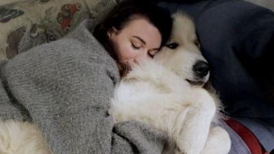 Bir hayvanla yakınlık kurmak mutluluk hormonunu artırıyor