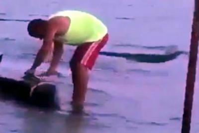 Bursa'da bir şahıs sahile vuran yunusu kesti!