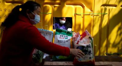 Çin'de bir şehirde daha kedi ve köpek yemek yasaklandı