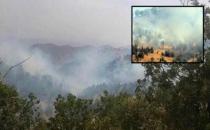 Cudi yanar, Türkiye'nin çevrecileri bakar!