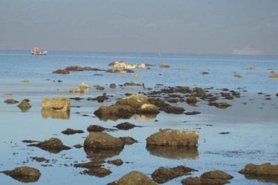 Deniz çekilince antik liman kalıntıları su yüzüne çıktı