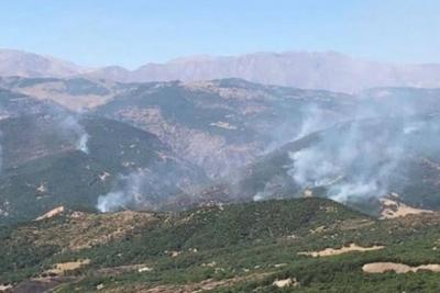 'Dersim'deki orman yangınına müdahale edilmedi'