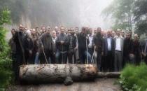 Eroğlu: Cerrattepe'de eylemciler yolu kapamak için ağaç kesti!
