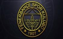 Fenerbahçe Üniversitesi kuruluyor!