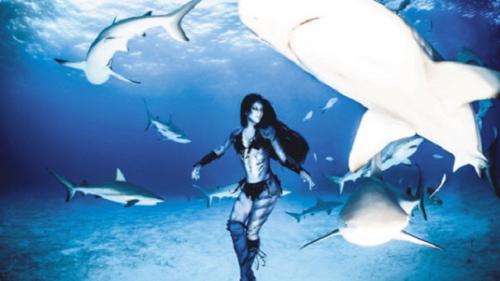 Köpekbalıklarının avlanmasına karşı ilginç eylem!