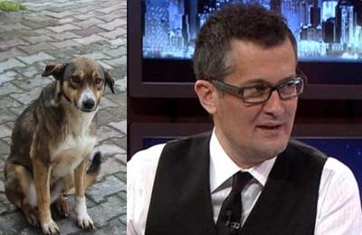 Hayvan düşmanı Cengiz Semercioğlu'ndan köpek ölümü yorumu: Ya çocuk ölseydi