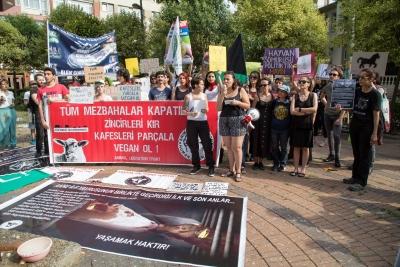 Hayvan hakları savunucuları 'Tüm mezbahalar kapatılsın' dedi!