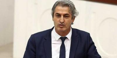 HDP Van Milletvekili Lezgin Botan'a hapis cezası