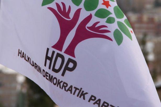 HDP'li Baydemir ve Birlik'e hapis cezası