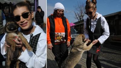 İrem Derici'den sokak hayvanları için yeni kampanya: Koruyucu aile olmaya var mısın?
