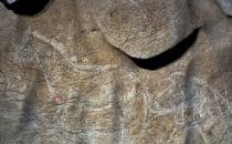 İspanya'da 14 bin 500 yıllık mağara resimleri bulundu!