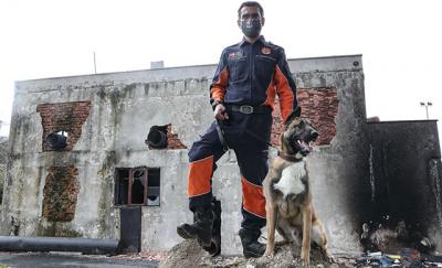İstanbul itfaiyesinden K9 merkezi: '130 tane canlı arama köpeğine ihtiyacımız var'
