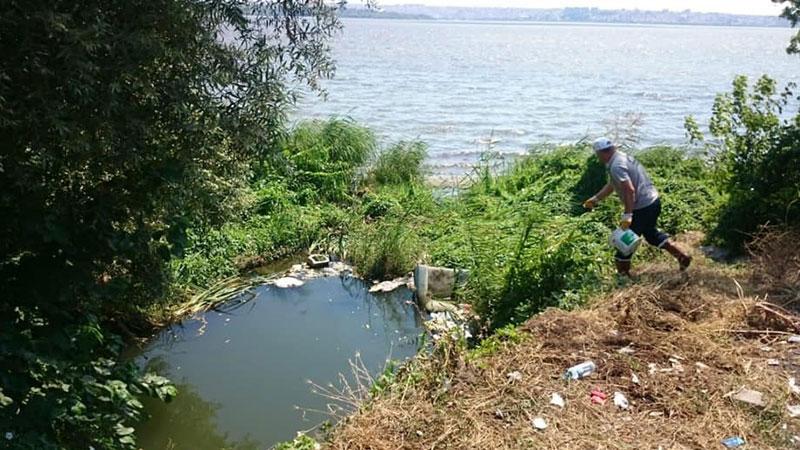 İstanbul'da görülen Batı Nil virüsünün yayılma nedeni belli oldu