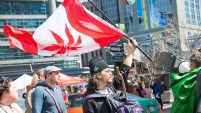 Kanada'da esrar yasallaştı!
