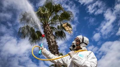 'Karantinada zararlı gazın salınımı yüzde 50'ye kadar düştü'