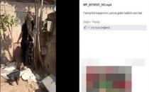 Kediye köpekle işkence yapan Önal Ramadan işten atıldı!
