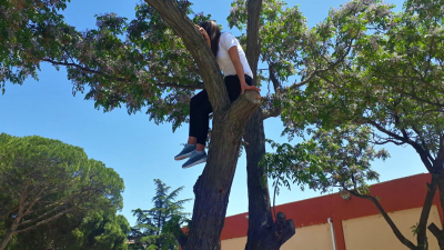 Kediyi kurtarmak için ağaca çıkan kişiyi itfaiye kurtardı