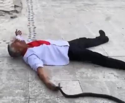Kendini yılana ısırttı