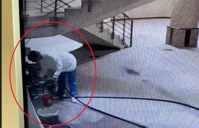 Köpeklere işkence yapan öğretim görevlisine 'mala zarar verme' davası