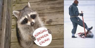 Hayvanseverler TÜYAP'ı boykota çağırıyor!