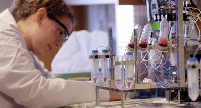 Laboratuvarda üretilen etler gıda sektöründe kullanılacak
