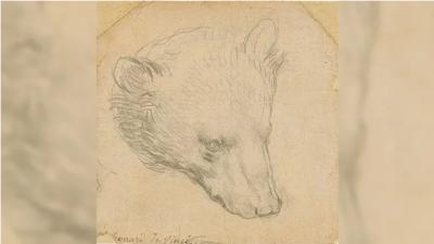 Leonardo da Vinci'nin ayı çizimi açık artırmaya çıkıyor